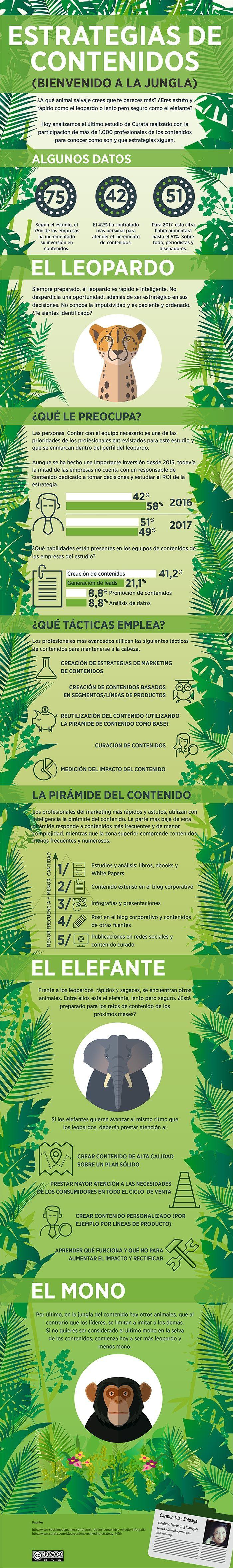 ¿Qué animal eres en la jungla de contenidos? Descúbrelo con el último estudio de contenidos de Curata.