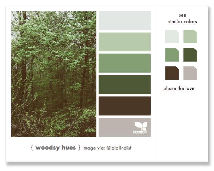 Cómo diseñar una infografía, elige bien los colores