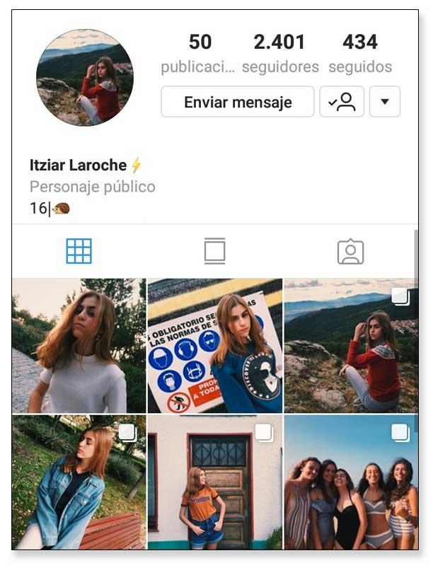 Ejemplo de bio en Instagram con categoría