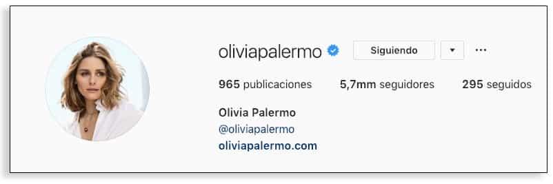 Perfil verificado en bio en Instagram