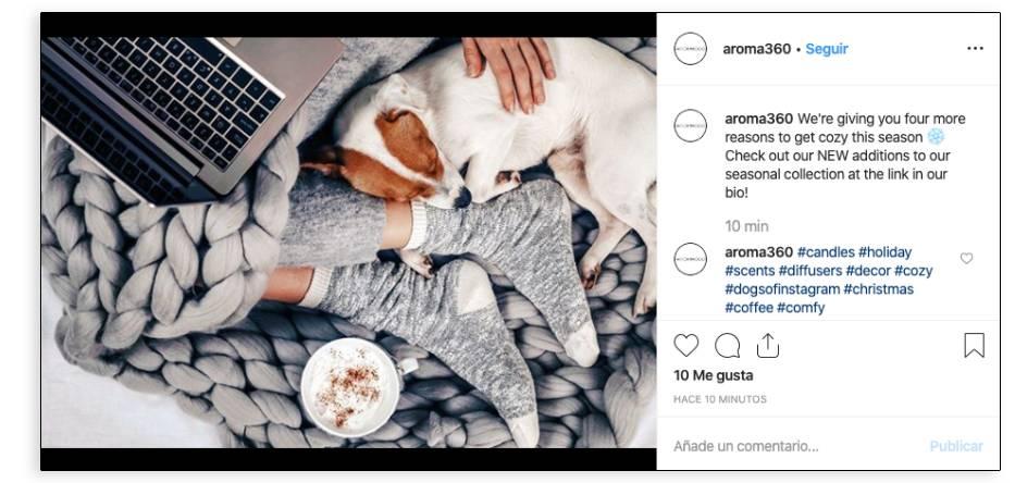 Contenido estacional en Instagram